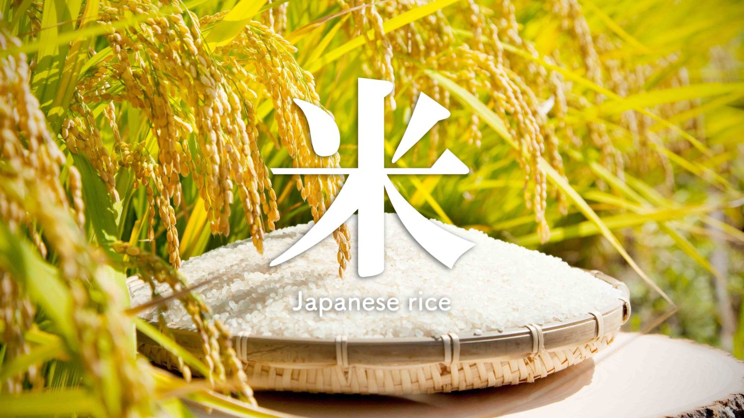 History of Japanese rice